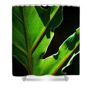 Vibrant Green Shower Curtain