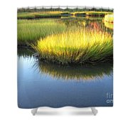 Vibrant Marsh Grasses Shower Curtain