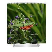 Vibrant Oak Tiger Butterfly Surrounded By Blue Flowers Shower Curtain