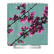 Vibrant Pink Flowers Bloom Floral Background Shower Curtain