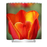 Vibrantly Yours Shower Curtain