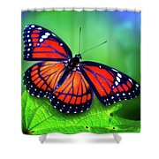 Viceroy Perch Shower Curtain