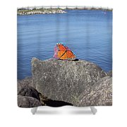 Viceroy Red List Endangered Series Shower Curtain
