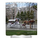 Victoria Horse Carriages Shower Curtain