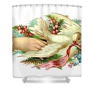 Victorian Dove Shower Curtain