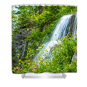Vidae Falls, Oregon Shower Curtain