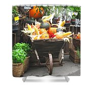 Vienna New Market Shower Curtain