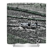Vietnamese Rice Harvest  Shower Curtain