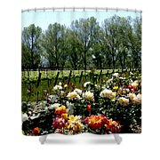 View From Bridlewood Vineyards Shower Curtain