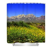 View From Dripping Springs Rd Shower Curtain