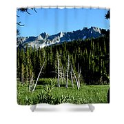 View From Lake Mary Shower Curtain