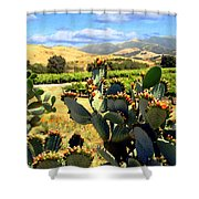 View From Santa Rosa Road Shower Curtain