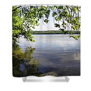 View From Under At Lake Carmi Shower Curtain
