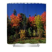 View In The Appalachian Mountains Shower Curtain