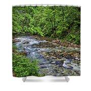 View In Vintgar Gorge - Slovenia Shower Curtain