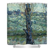 View Of Arles, Flowering Orchards Shower Curtain