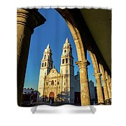 View Of Cathedral And Arches Shower Curtain
