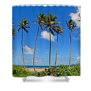 View Of Fiji Shower Curtain