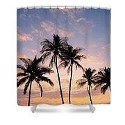 View Of Palms Shower Curtain