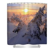 View Of Snow-covered Trees At Mont Shower Curtain