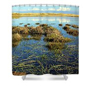 View Of The Marsh Shower Curtain