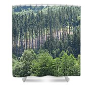View Of The Mixed Forest Shower Curtain