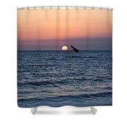 Vilano Beach At Sunrise Shower Curtain