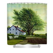 Village Road Orient  16x20 Shower Curtain