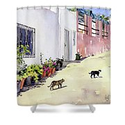 Village Street With Cats In Hortichuelas Shower Curtain