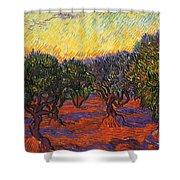 Vincent Van Gogh Shower Curtain