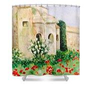 Vincent's Asylum Shower Curtain