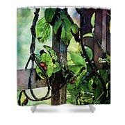 Vine And Trellis Digital Watercolor 4472 W_2 Shower Curtain