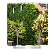 Vine Cover Shower Curtain
