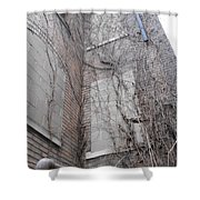 Vine Covered Dormitory Shower Curtain