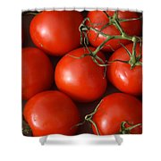 Vine Ripe Tomatoes Fine Art Food Photography Shower Curtain
