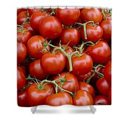 Vine Ripe Tomatos Shower Curtain by John Trax