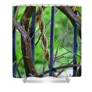 Vines II Shower Curtain