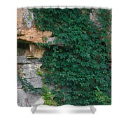 Vines On The Rocks Shower Curtain