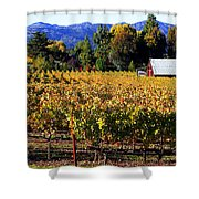 Vineyard 4 Shower Curtain
