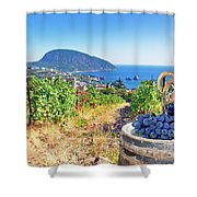 Vineyard And Sea Shower Curtain