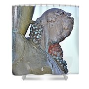 Vineyard Goddess Shower Curtain