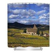 Vineyard In Alsace, France Shower Curtain