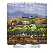 Vineyard In California Shower Curtain