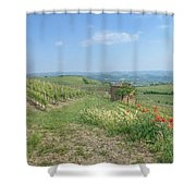 Vineyard In Italy Shower Curtain