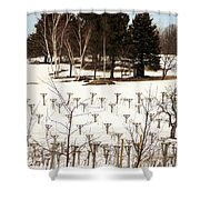 Vineyard In The North Shower Curtain
