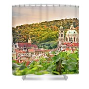 Vineyard Of Prague Shower Curtain