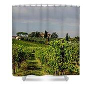 Vineyard View Shower Curtain
