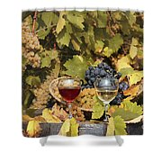 Vineyard With Red And White Wine Autumn Season Shower Curtain