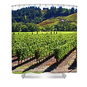 Vineyards In Sonoma County Shower Curtain