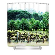 Vino Palmetto Shower Curtain